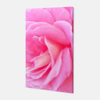 Miniaturka Blushing Rose Canvas, Live Heroes