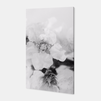 Miniatur Black And White Blossoms Canvas, Live Heroes