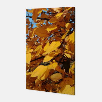 Miniatur yellow autumn leaves Canvas, Live Heroes