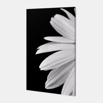 Thumbnail image of Half Daisy In Black And White Canvas, Live Heroes