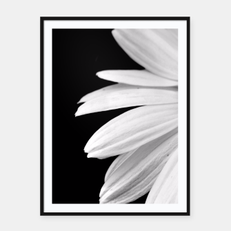 Thumbnail image of Half Daisy In Black And White Framed poster, Live Heroes