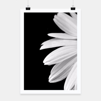 Thumbnail image of Half Daisy In Black And White Poster, Live Heroes
