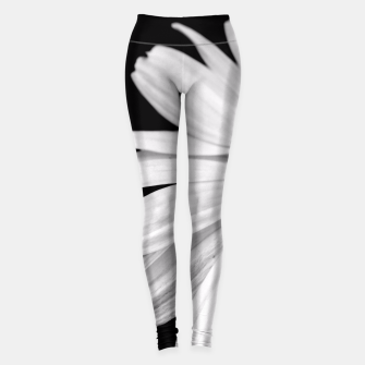 Miniatur Half Daisy In Black And White Leggings, Live Heroes