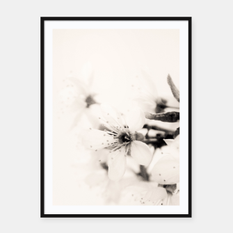 Thumbnail image of Monochrome Blossoms Close-up Framed poster, Live Heroes