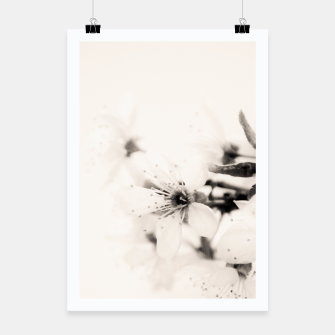 Thumbnail image of Monochrome Blossoms Close-up Poster, Live Heroes