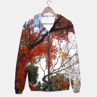 Thumbnail image of Autumn Season Hoodie, Live Heroes
