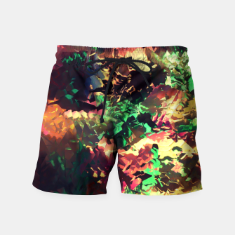 Thumbnail image of Neon Pieces Swim Shorts, Live Heroes