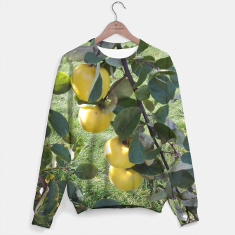 Miniatur apples on a tree Bluza, Live Heroes