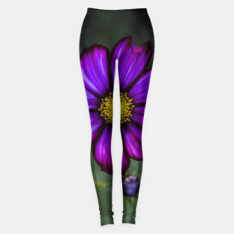 Thumbnail image of Floral autumn Leggings, Live Heroes