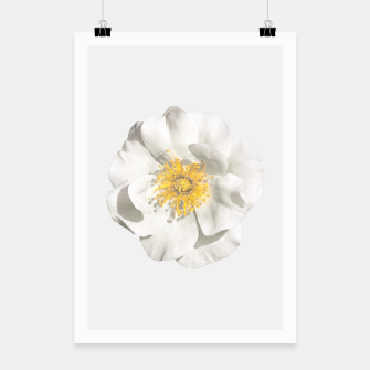 Miniature de image de White Flower Photo Poster, Live Heroes
