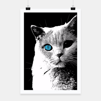 cat 2 black and white Plakat obraz miniatury