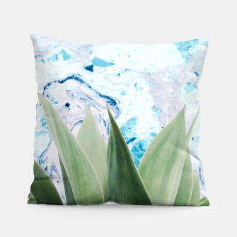 Thumbnail image of Marbled background plant Almohada, Live Heroes