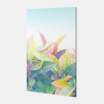 Miniatur After the rain / Tropical Croton Leaves 4 Canvas, Live Heroes