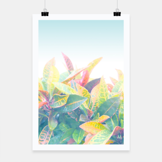 After the rain / Tropical Croton Leaves 4 Poster thumbnail image