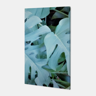 Miniatur monstera Canvas, Live Heroes