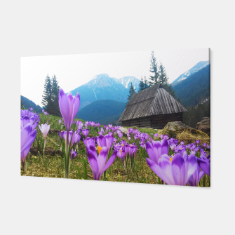 Thumbnail image of Mountain Flower View Canvas, Live Heroes
