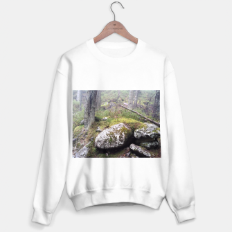 Thumbnail image of Fog Forest Sweater regular, Live Heroes
