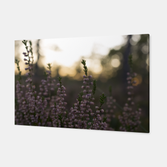 Thumbnail image of Calluna Canvas, Live Heroes