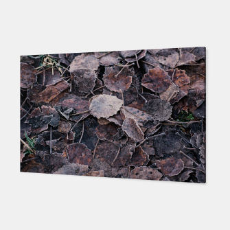 Thumbnail image of Frost on leaves Canvas, Live Heroes