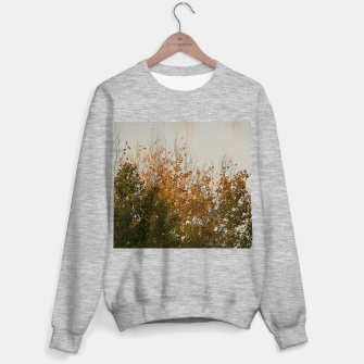 Thumbnail image of Signs of autumn Sweater regular, Live Heroes