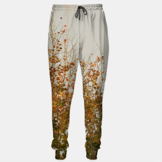 Thumbnail image of Signs of autumn Sweatpants, Live Heroes