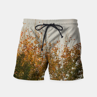 Thumbnail image of Signs of autumn Swim Shorts, Live Heroes