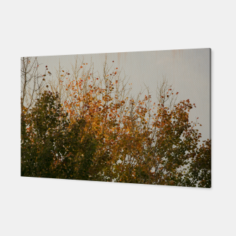 Thumbnail image of Signs of autumn Canvas, Live Heroes