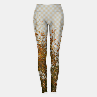 Thumbnail image of Signs of autumn Leggings, Live Heroes