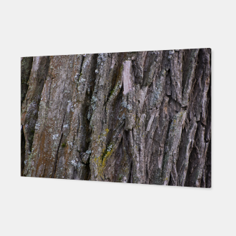 Thumbnail image of Tree trunk Canvas, Live Heroes