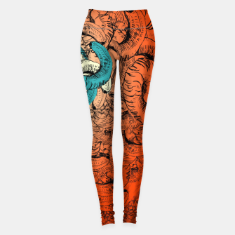 Thumbnail image of Khnum  Leggings, Live Heroes