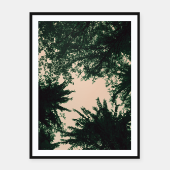 Miniatur Trees and sky Framed poster, Live Heroes