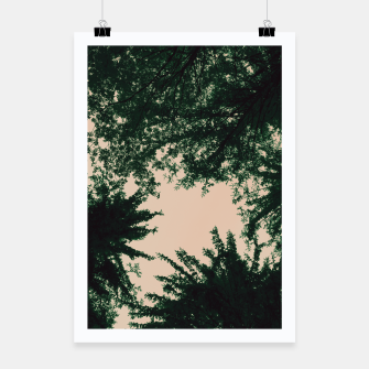 Thumbnail image of Trees and sky Poster, Live Heroes