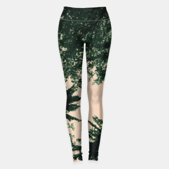 Thumbnail image of Trees and sky Leggings, Live Heroes