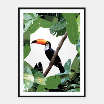 Thumbnail image of Toucan and leaves Framed poster, Live Heroes