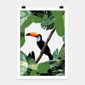 Thumbnail image of Toucan and leaves Poster, Live Heroes