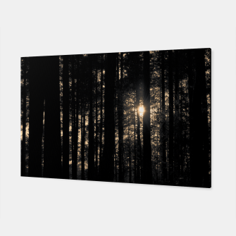 Miniatur Sun between trees Canvas, Live Heroes