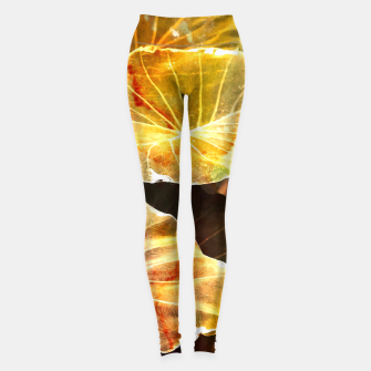 Miniature de image de Macro Leaves Leggings, Live Heroes