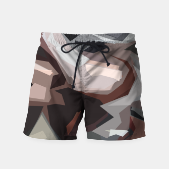Thumbnail image of Decisions Swim Shorts, Live Heroes