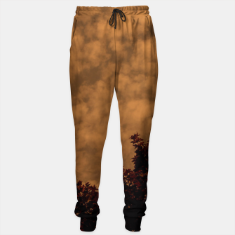 Thumbnail image of Nowhere Sweatpants, Live Heroes