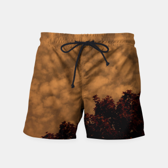 Thumbnail image of Nowhere Swim Shorts, Live Heroes