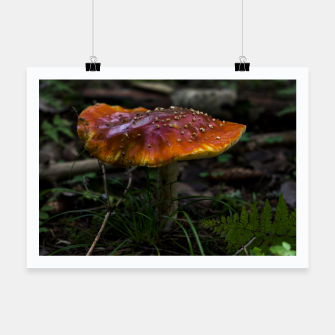 Thumbnail image of Mushroom Poster, Live Heroes