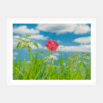 Thumbnail image of Beauty Nature Scene Photo Framed poster, Live Heroes