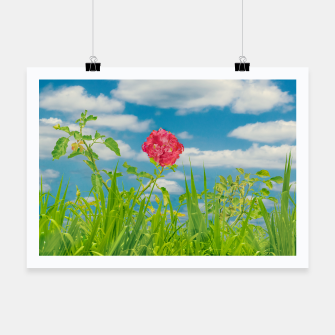 Thumbnail image of Beauty Nature Scene Photo Poster, Live Heroes