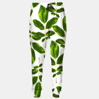 Thumbnail image of Natural Cure Sweatpants, Live Heroes