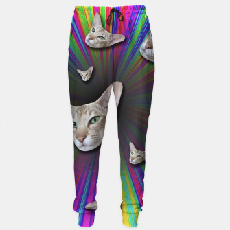 Thumbnail image of LET'S TRIP Sweatpants, Live Heroes