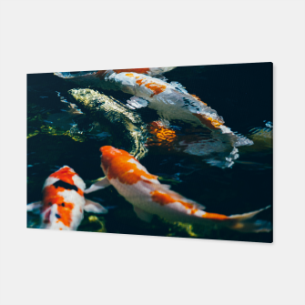 Miniatur Koi Fish In Water Canvas, Live Heroes
