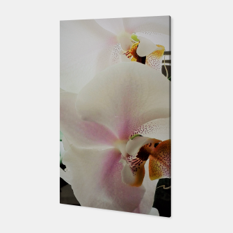 Thumbnail image of orchid white&pink Canvas, Live Heroes