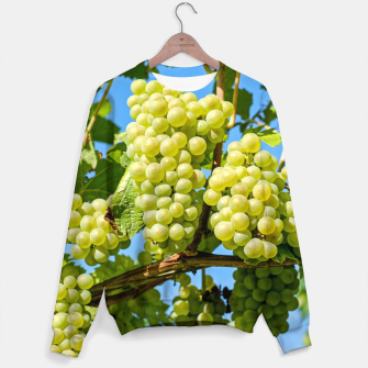 Miniaturka Delicious growing green grapes bunch farming on a beautiful blue summer sky background Sweater, Live Heroes