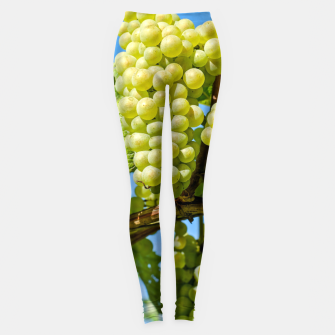Miniaturka Delicious growing green grapes bunch farming on a beautiful blue summer sky background Leggings, Live Heroes