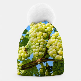 Miniaturka Delicious growing green grapes bunch farming on a beautiful blue summer sky background Beanie, Live Heroes